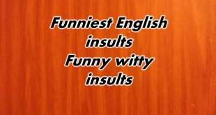 Funniest English insults
