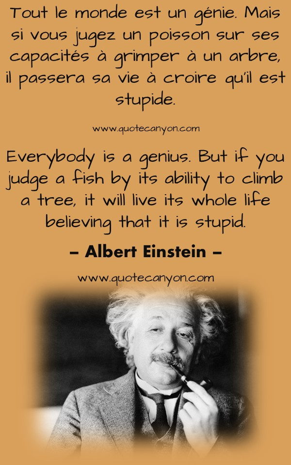 Albert Einstein French To English Quotes