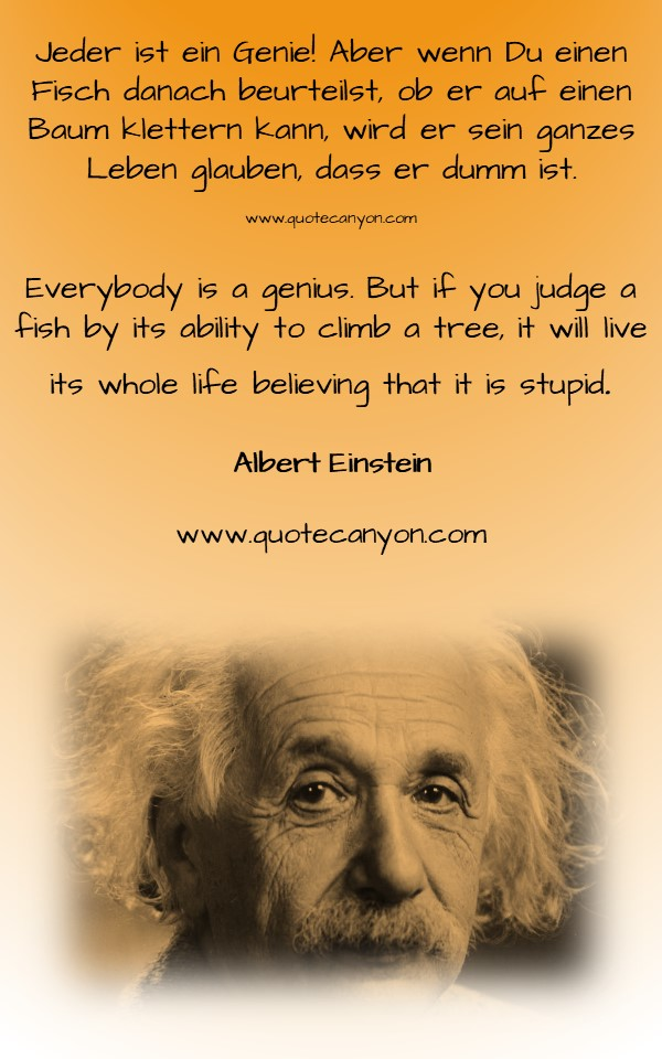 German to English Albert Einstein Quotes