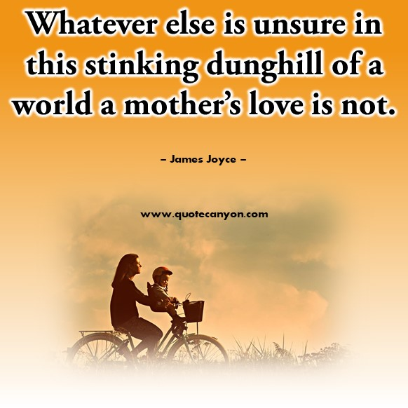 Quotes by famous people - Whatever else is unsure in this stinking dunghill of a world a mother's love is not - James Joyce
