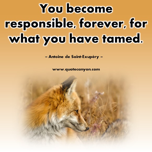 Famous sayings - You become responsible, forever, for what you have tamed - Antoine de Saint-Exupéry