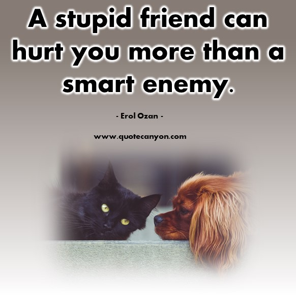 Quotes by famous people - A stupid friend can hurt you more than a smart enemy - Erol Ozan