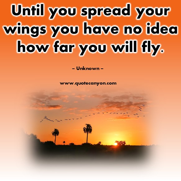 Famous quote - Until you spread your wings you have no idea how far you will fly - Unknown