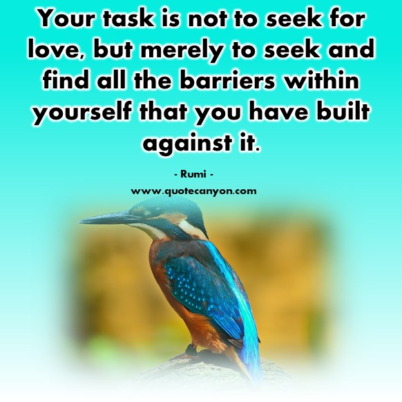 Famous inspirational quotes - Your task is not to seek for love - Rumi