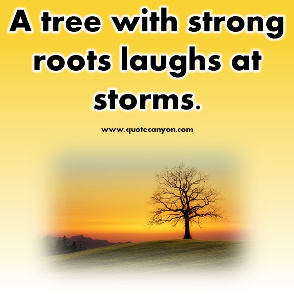 inspirational short quotes about life - A tree with strong roots laughs at storms