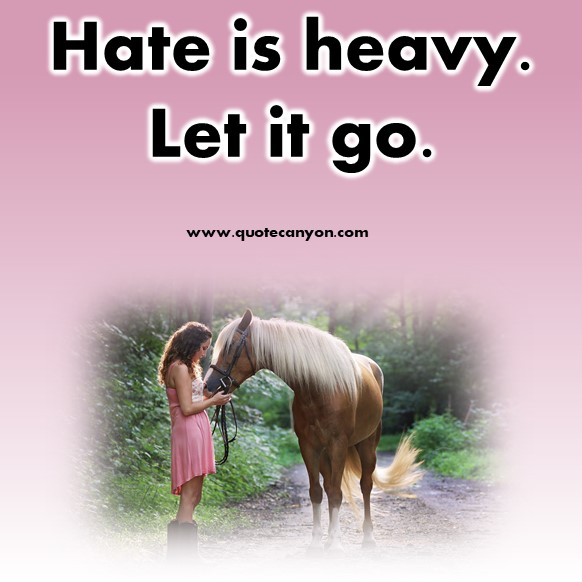 short hate quote - Hate is heavy. Let it go