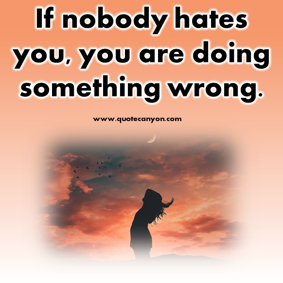 short inspirational quotes - If nobody hates you, you are doing something wrong