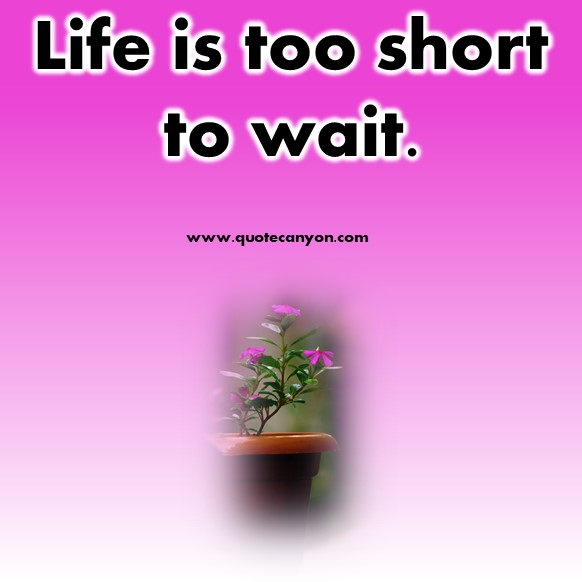 short quotes about life - Life is too short to wait
