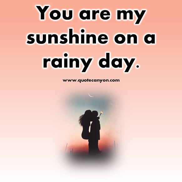 short quotes about love - You are my sunshine on a rainy day