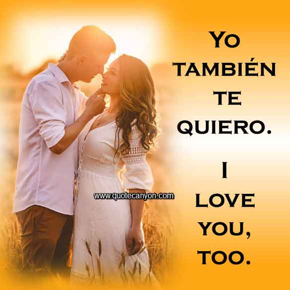 154 Spanish To English Most Beautiful Love Quotes And Phrases