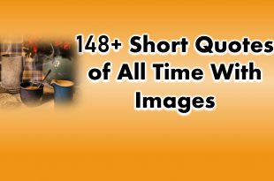148+ Short Quotes of All Time With Images