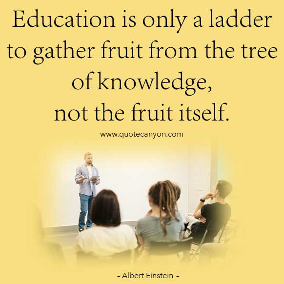 Albert Einstein Education Quote that says Education is only a ladder to gather fruit from the tree of knowledge, not the fruit itself