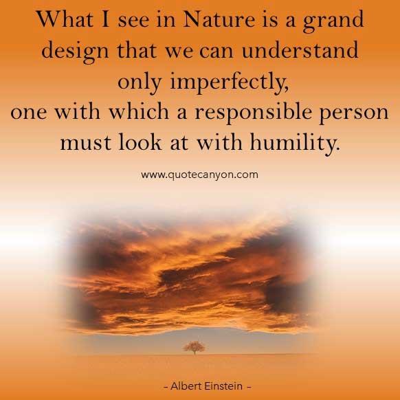Albert Einstein Nature Quote that says What I see in Nature is a grand design that we can understand only imperfectly, one with which a responsible person must look at with humility