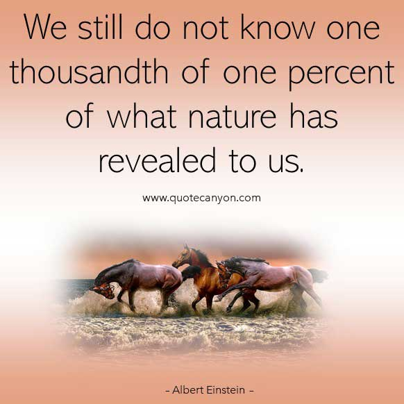 Albert Einstein Quote on Nature that says We still do not know one thousandth of one percent of what nature has revealed to us