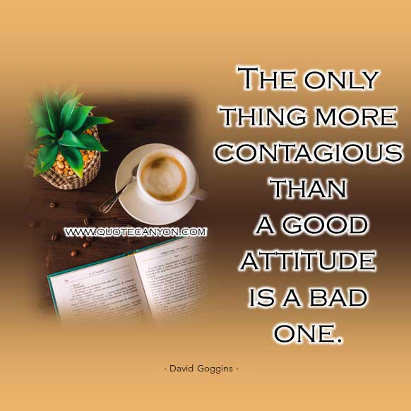 David googing image quote that says The only thing more contagious than a good attitude is a bad one.