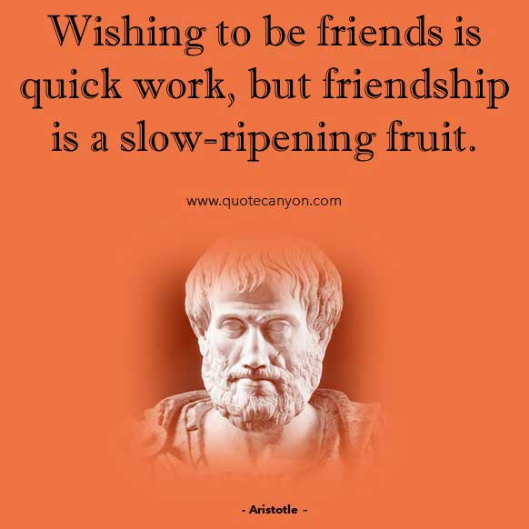 Friendship Philosophy Quote from Aristotle that says Wishing to be friends is quick work, but friendship is a slow-ripening fruit